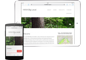 HAVA website